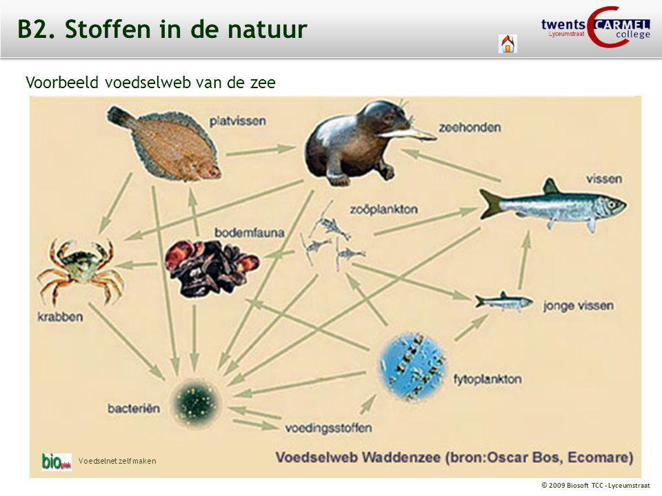 © 2009 Biosoft TCC - Lyceumstraat B2. Stoffen in de natuur Voorbeeld voedselweb van de zee Voedselnet zelf maken