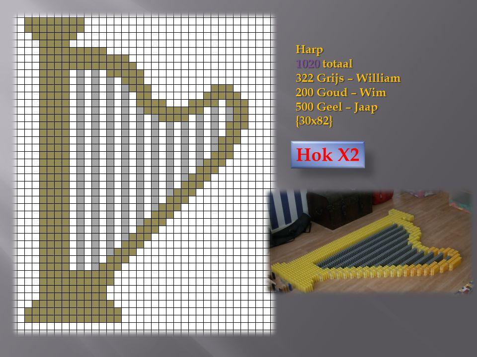 Harp 1020 totaal 322 Grijs – William 200 Goud – Wim 500 Geel – Jaap {30x82} Hok X2