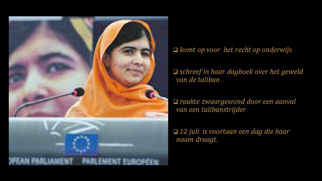  komt op voor het recht op onderwijs  schreef in haar dagboek over het geweld van de taliban  raakte zwaargewond door een aanval van een talibanstrijder  12 juli is voortaan een dag die haar naam draagt.