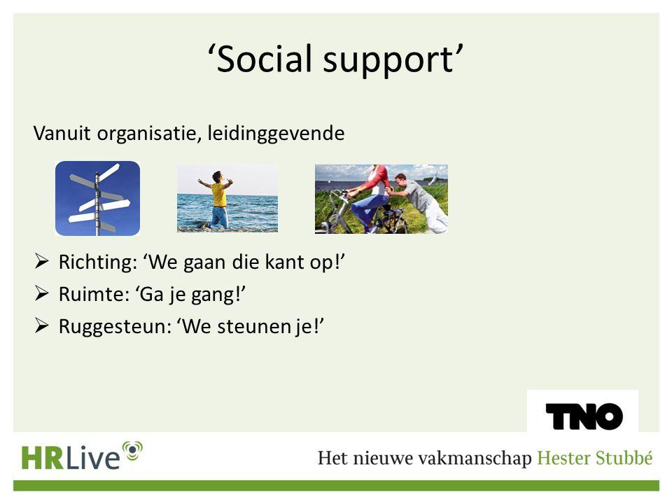 'Social support' Vanuit organisatie, leidinggevende  Richting: 'We gaan die kant op!'  Ruimte: 'Ga je gang!'  Ruggesteun: 'We steunen je!'