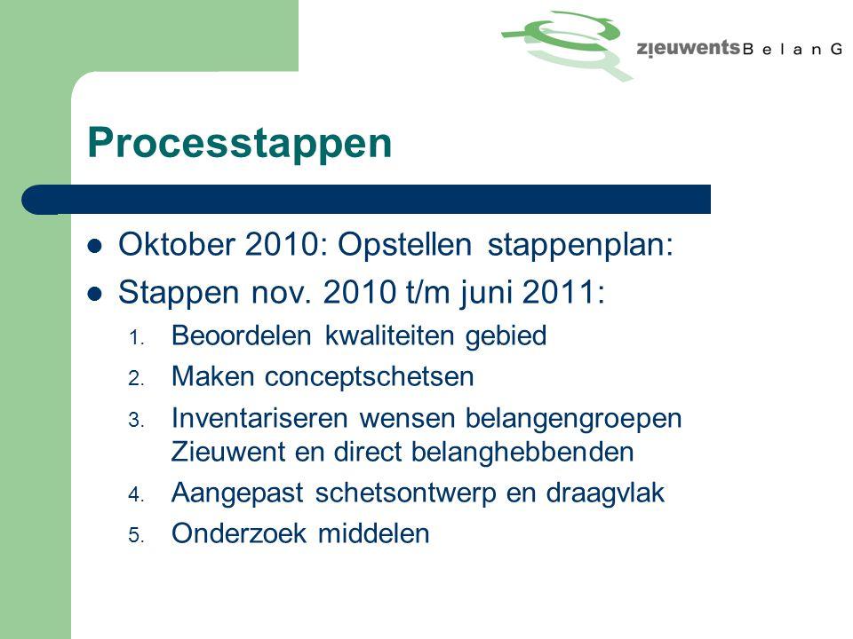 Processtappen Oktober 2010: Opstellen stappenplan: Stappen nov.