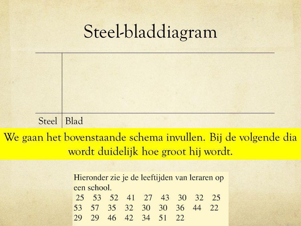 Steel-bladdiagram SteelBlad We gaan het bovenstaande schema invullen. Bij de volgende dia wordt duidelijk hoe groot hij wordt.