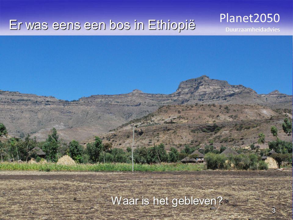 Er was eens een bos in Ethiopië Planet2050 Duurzaamheidadvies 3 Waar is het gebleven