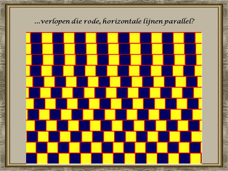 ...verlopen die rode, horizontale lijnen parallel?