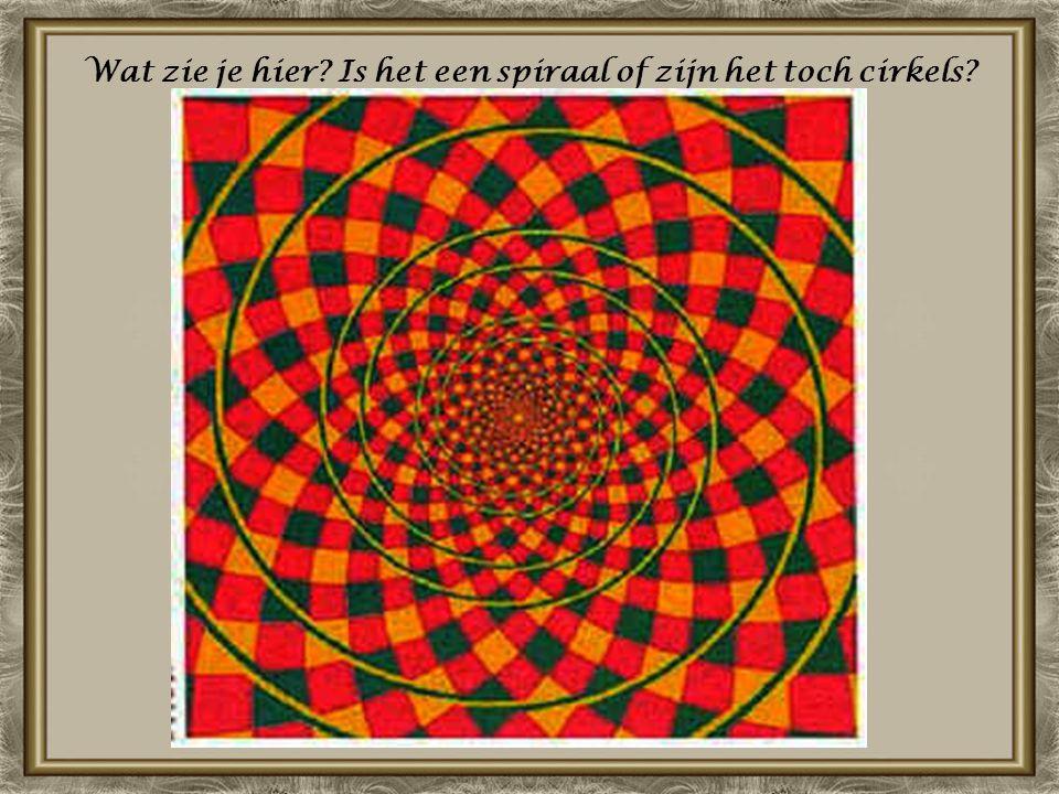 Wat zie je hier? Is het een spiraal of zijn het toch cirkels?