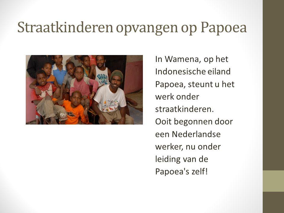 Straatkinderen opvangen op Papoea In Wamena, op het Indonesische eiland Papoea, steunt u het werk onder straatkinderen. Ooit begonnen door een Nederla