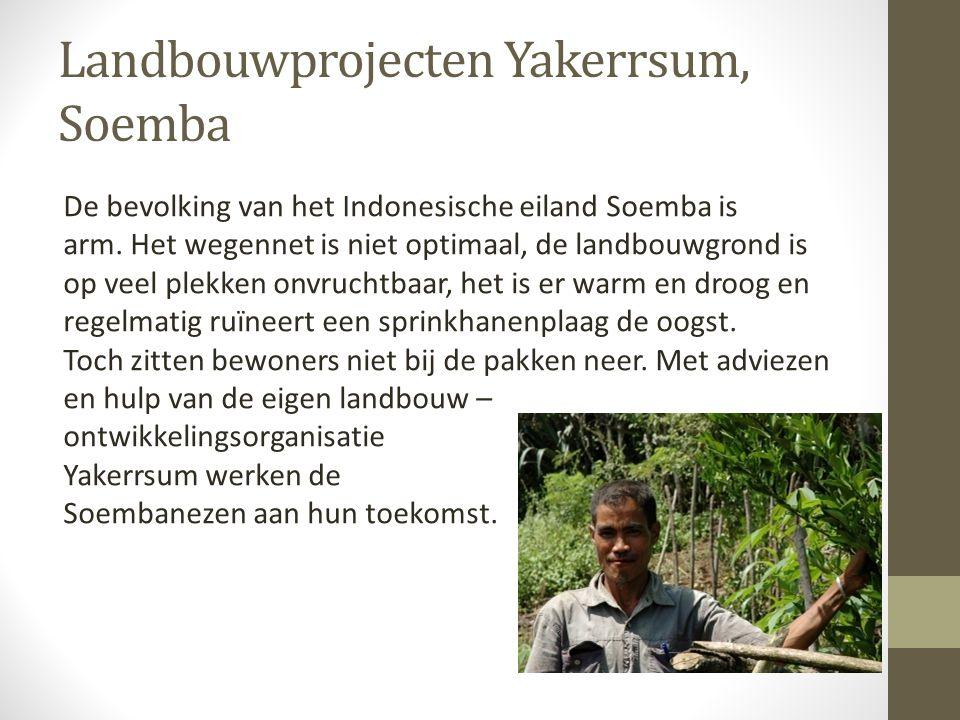 Landbouwprojecten Yakerrsum, Soemba De bevolking van het Indonesische eiland Soemba is arm. Het wegennet is niet optimaal, de landbouwgrond is op veel
