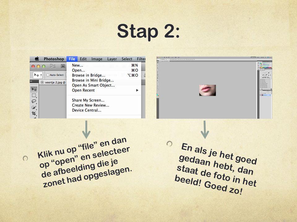 Stap 2: Klik nu links in de tool balk op het icoontje wat hiernaast is aangewezen.