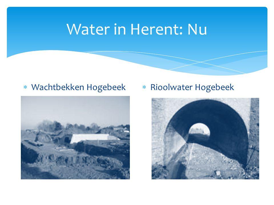  Wachtbekken Hogebeek  Rioolwater Hogebeek