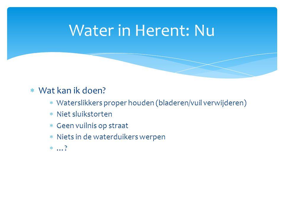 Wat kan ik doen?  Waterslikkers proper houden (bladeren/vuil verwijderen)  Niet sluikstorten  Geen vuilnis op straat  Niets in de waterduikers w