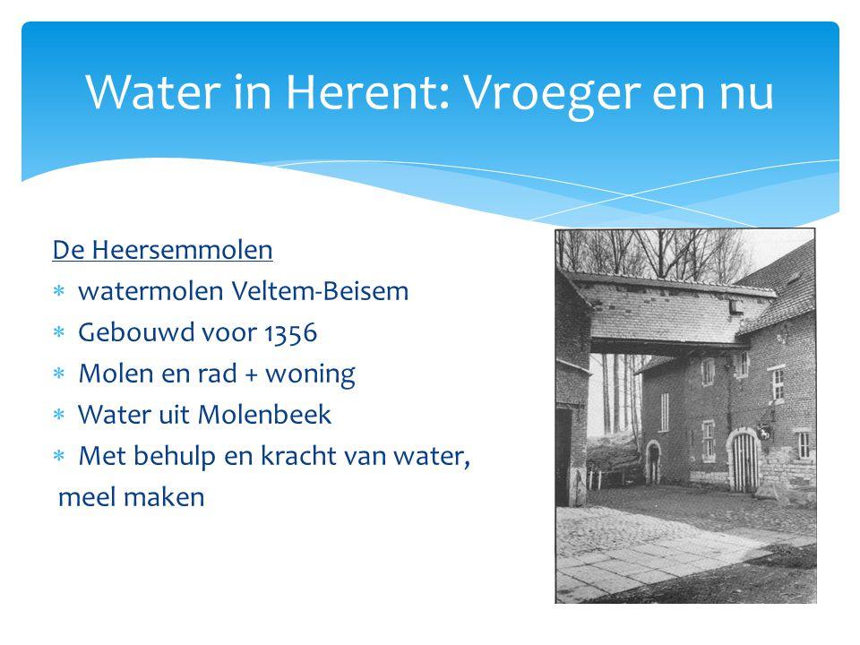 De Heersemmolen  watermolen Veltem-Beisem  Gebouwd voor 1356  Molen en rad + woning  Water uit Molenbeek  Met behulp en kracht van water, meel ma