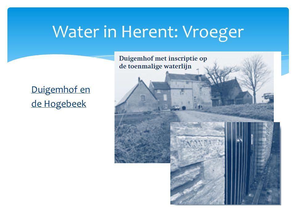 Duigemhof en de Hogebeek Water in Herent: Vroeger
