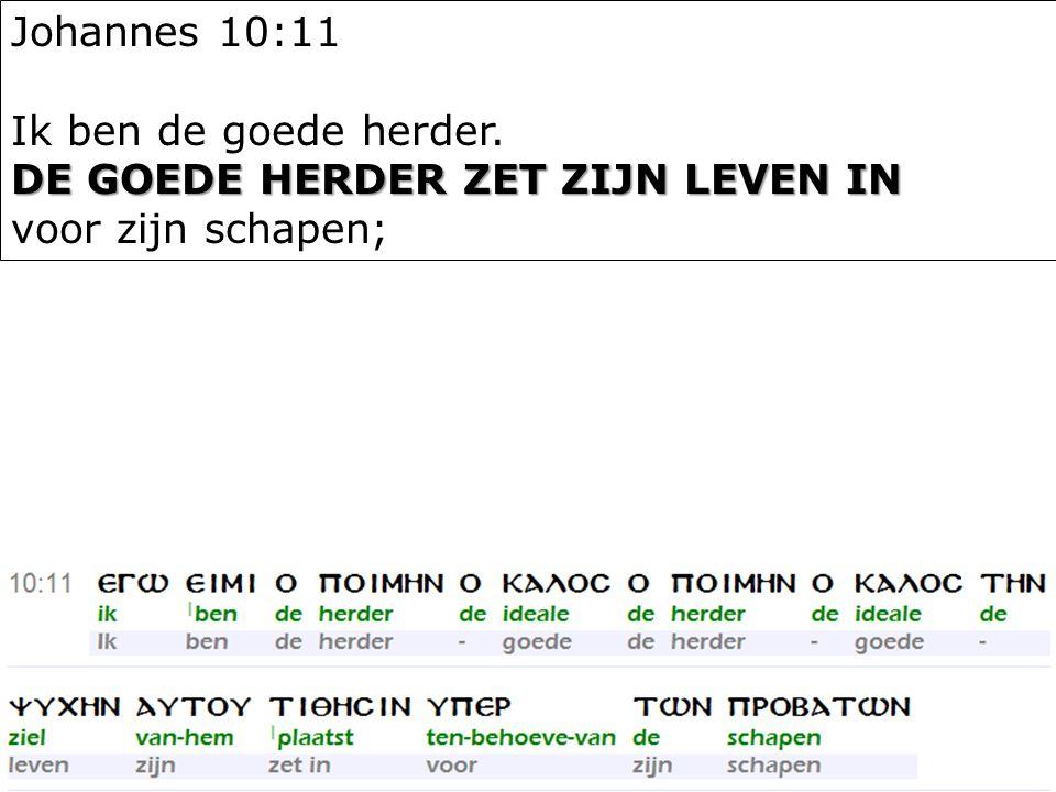 13 Johannes 10:11 Ik ben de goede herder. DE GOEDE HERDER ZET ZIJN LEVEN IN voor zijn schapen;