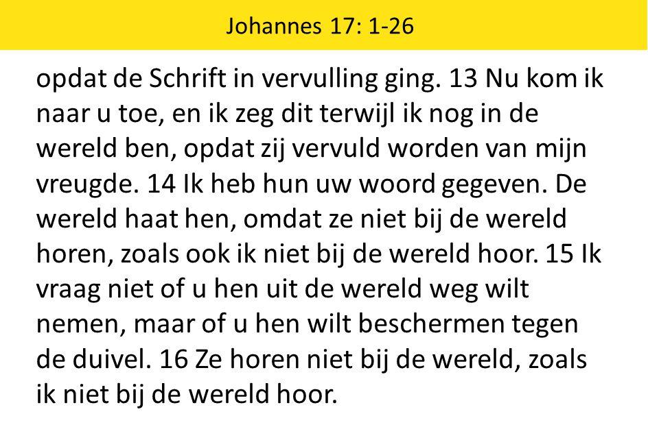 opdat de Schrift in vervulling ging. 13 Nu kom ik naar u toe, en ik zeg dit terwijl ik nog in de wereld ben, opdat zij vervuld worden van mijn vreugde