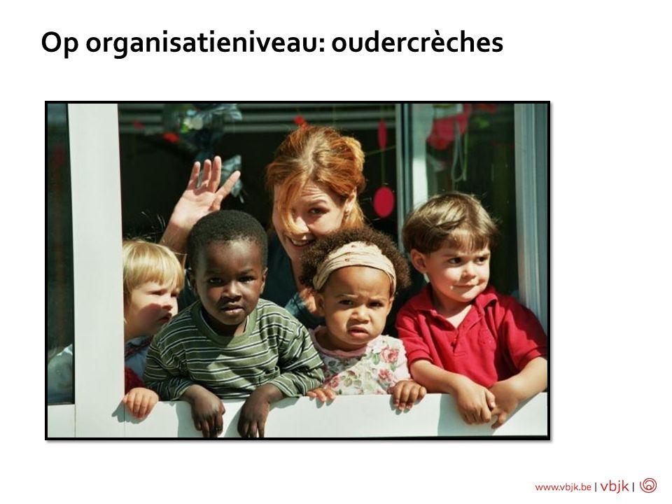 Op organisatieniveau: oudercrèches