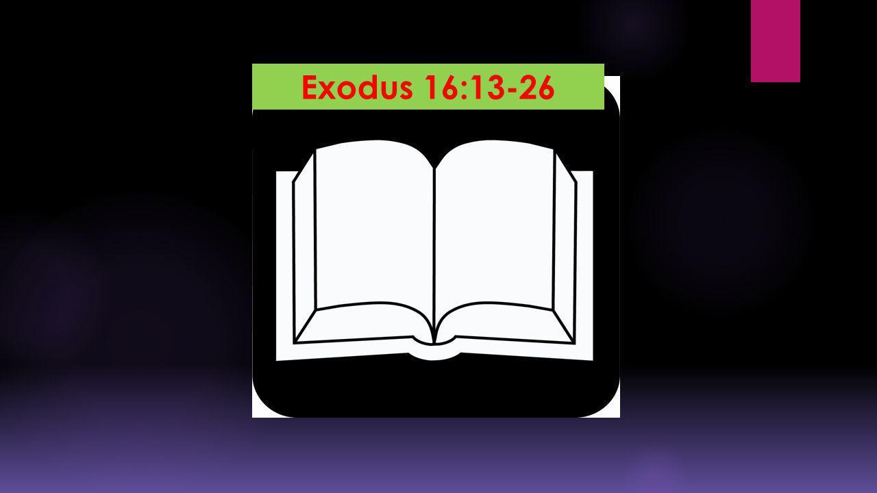 Exodus 16:13-26