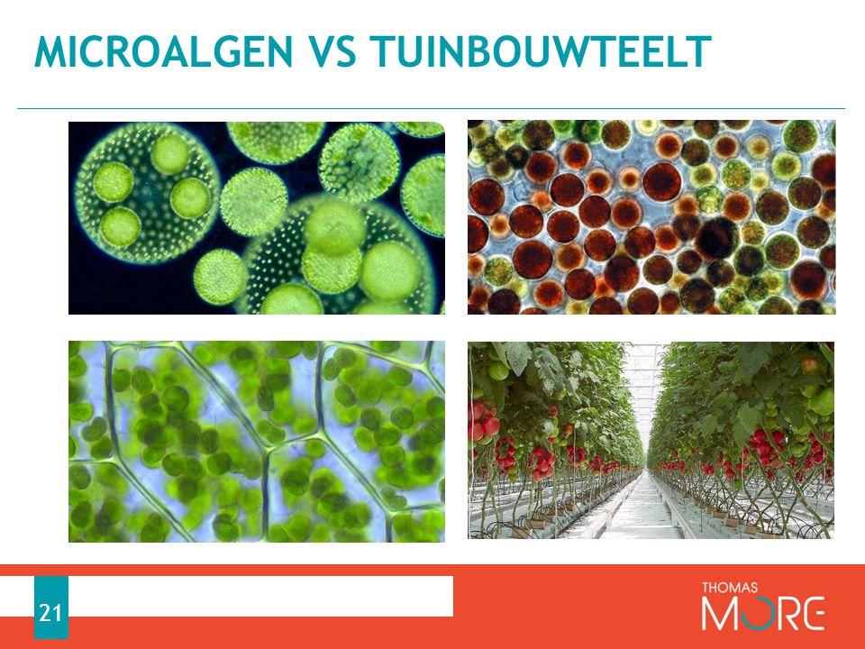 MICROALGEN VS TUINBOUWTEELT 21