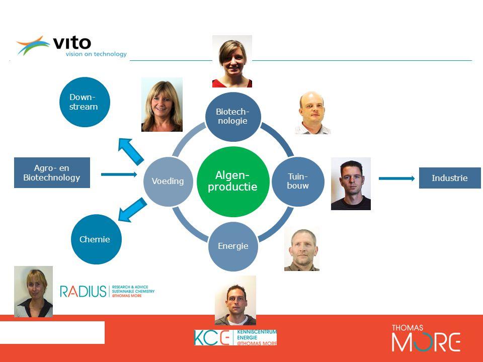 27 Algen- productie Biotech- nologie Tuin- bouw EnergieVoeding Agro- en Biotechnology Industrie Down- stream Chemie