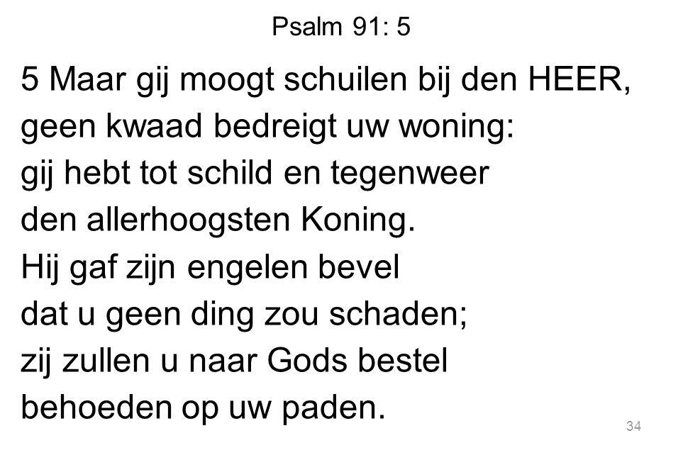 Psalm 91: 5 5 Maar gij moogt schuilen bij den HEER, geen kwaad bedreigt uw woning: gij hebt tot schild en tegenweer den allerhoogsten Koning.
