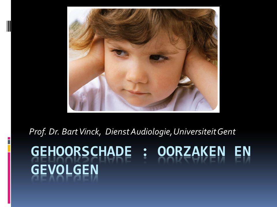 Prof. Dr. Bart Vinck, Dienst Audiologie, Universiteit Gent