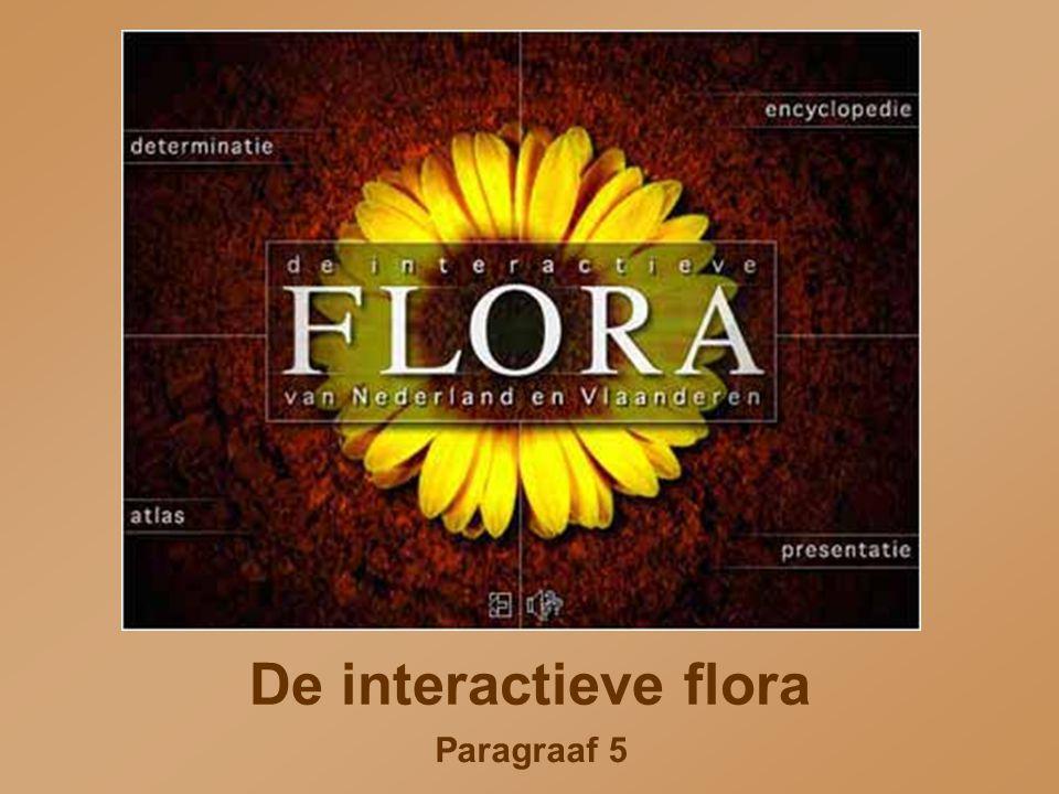Paragraaf 5 De interactieve flora