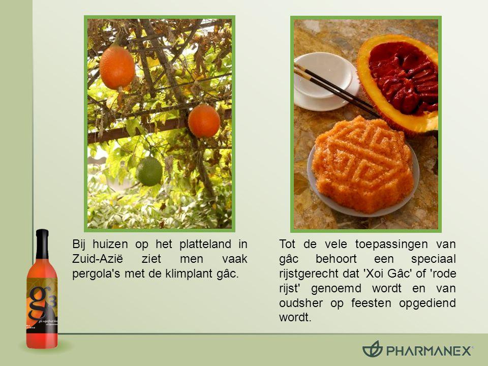 Gâc bevat de als heilzaam erkende antioxidanten lycopeen, bètacaroteen en vitamine E.
