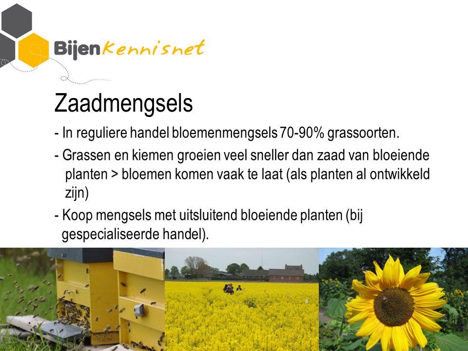 Zaadmengsels - In reguliere handel bloemenmengsels 70-90% grassoorten.