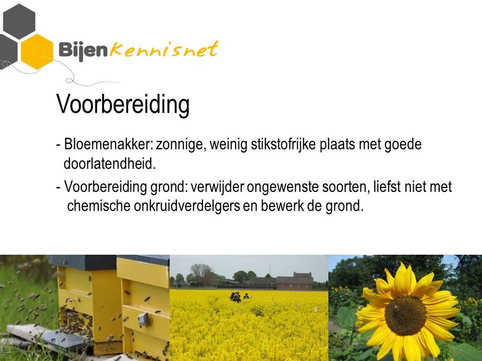 Voorbereiding - Bloemenakker: zonnige, weinig stikstofrijke plaats met goede doorlatendheid.
