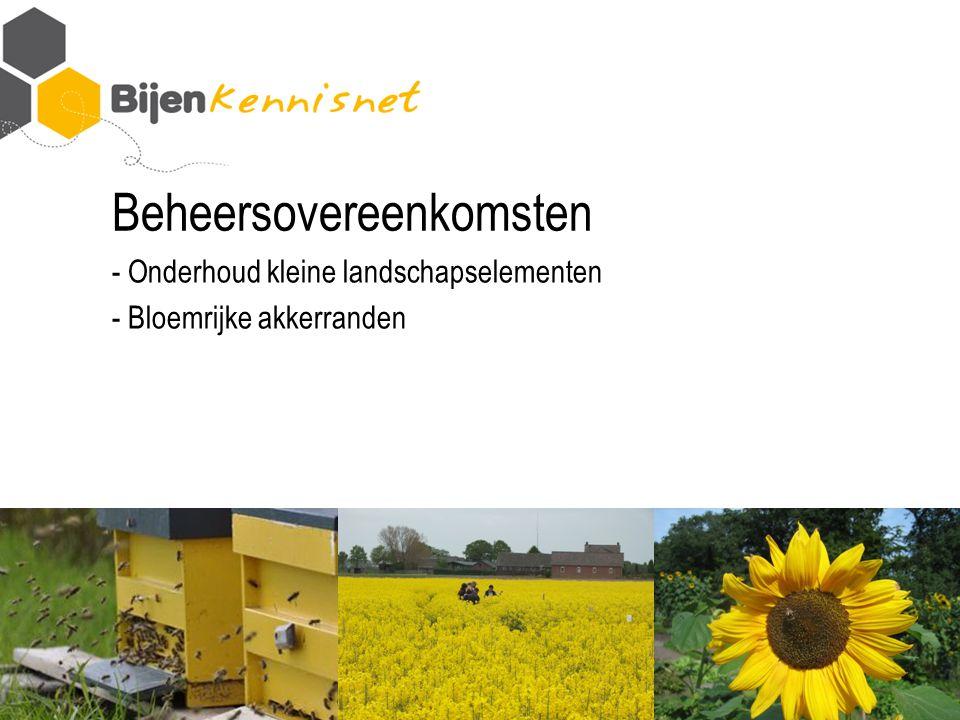 Beheersovereenkomsten - Onderhoud kleine landschapselementen - Bloemrijke akkerranden