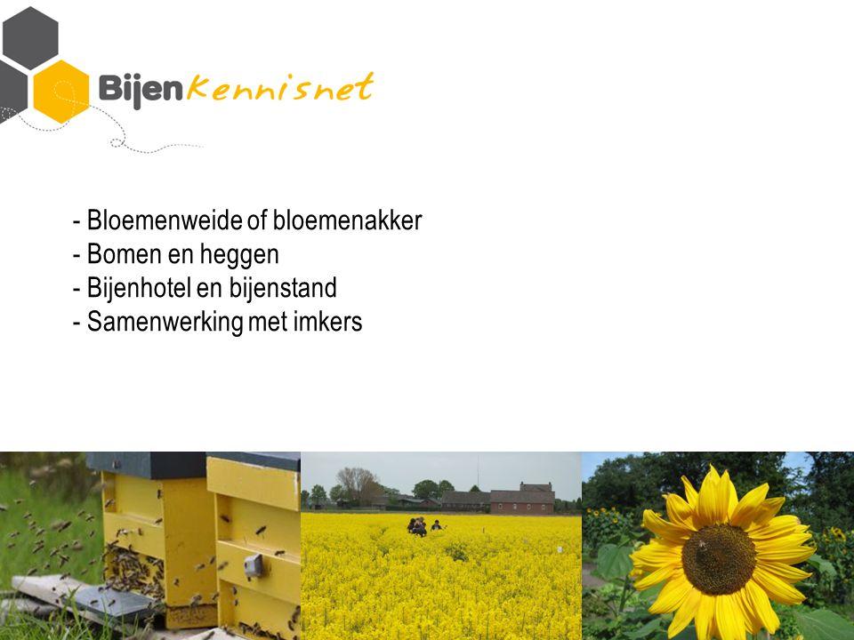 - Bloemenweide of bloemenakker - Bomen en heggen - Bijenhotel en bijenstand - Samenwerking met imkers