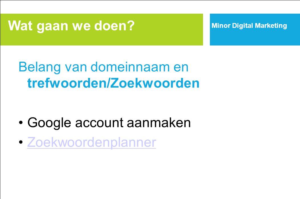 Belang van domeinnaam en trefwoorden/Zoekwoorden Google account aanmaken Zoekwoordenplanner Wat gaan we doen? Minor Digital Marketing