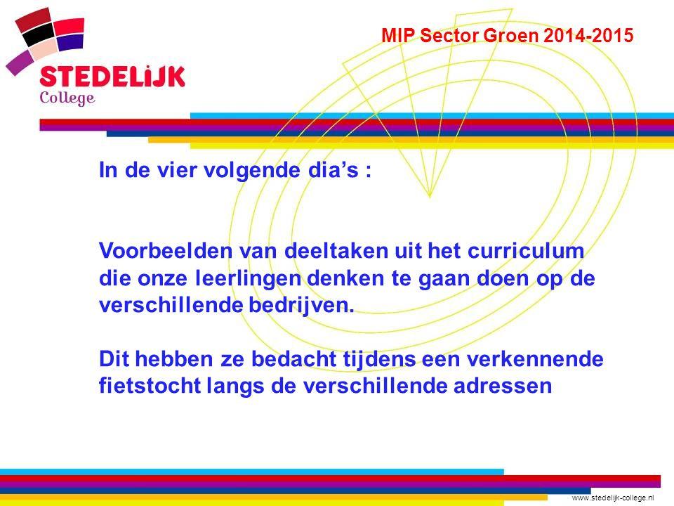 www.stedelijk-college.nl MIP Sector Groen 2014-2015 In de vier volgende dia's : Voorbeelden van deeltaken uit het curriculum die onze leerlingen denke