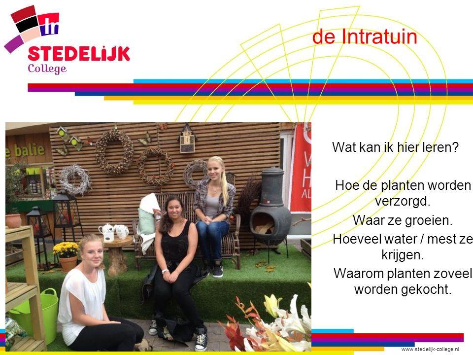 www.stedelijk-college.nl Intratuin Wat kan ik hier leren? -Hoe de planten worden verzorgd. -Waar ze groeien. -Hoeveel water / mest ze krijgen. -Waarom