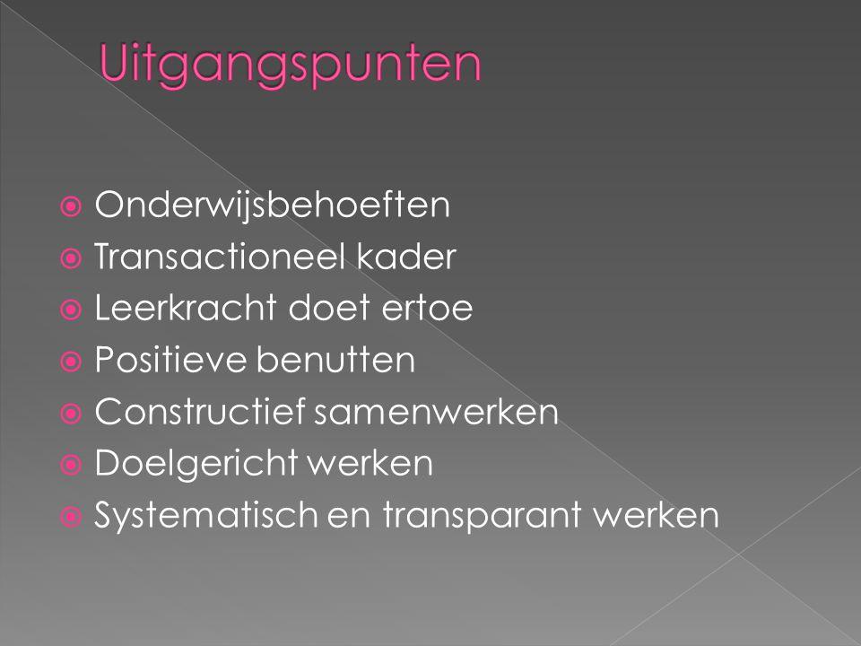  Onderwijsbehoeften  Transactioneel kader  Leerkracht doet ertoe  Positieve benutten  Constructief samenwerken  Doelgericht werken  Systematisc