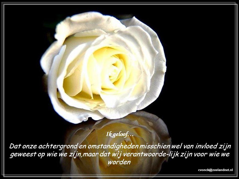 cvonck@zeelandnet.nl Ik geloof… Dat onze achtergrond en omstandigheden misschien wel van invloed zijn geweest op wie we zijn,maar dat wìj verantwoorde-lijk zijn voor wie we worden.