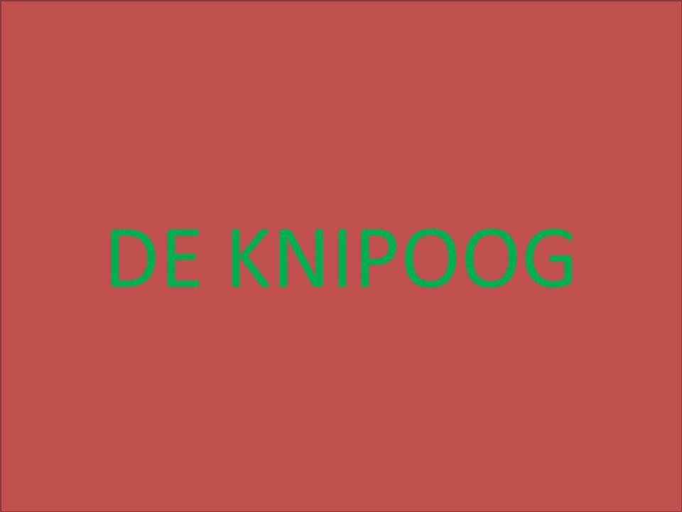 over DE KNIPOOG