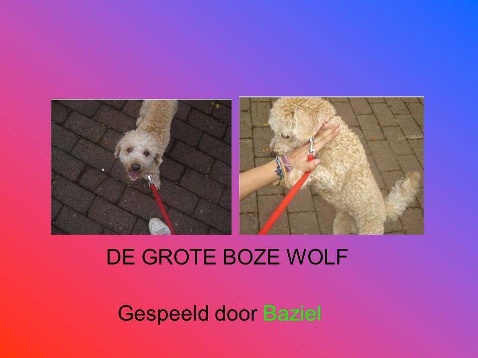 DE GROTE BOZE WOLF Gespeeld door Baziel
