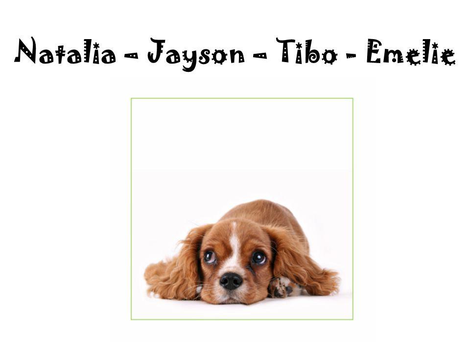 Natalia – Jayson – Tibo - Emelie