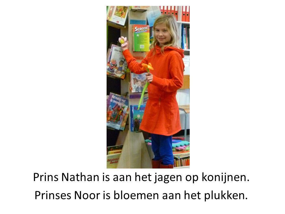 Prins Nathan is aan het jagen op konijnen. Prinses Noor is bloemen aan het plukken.