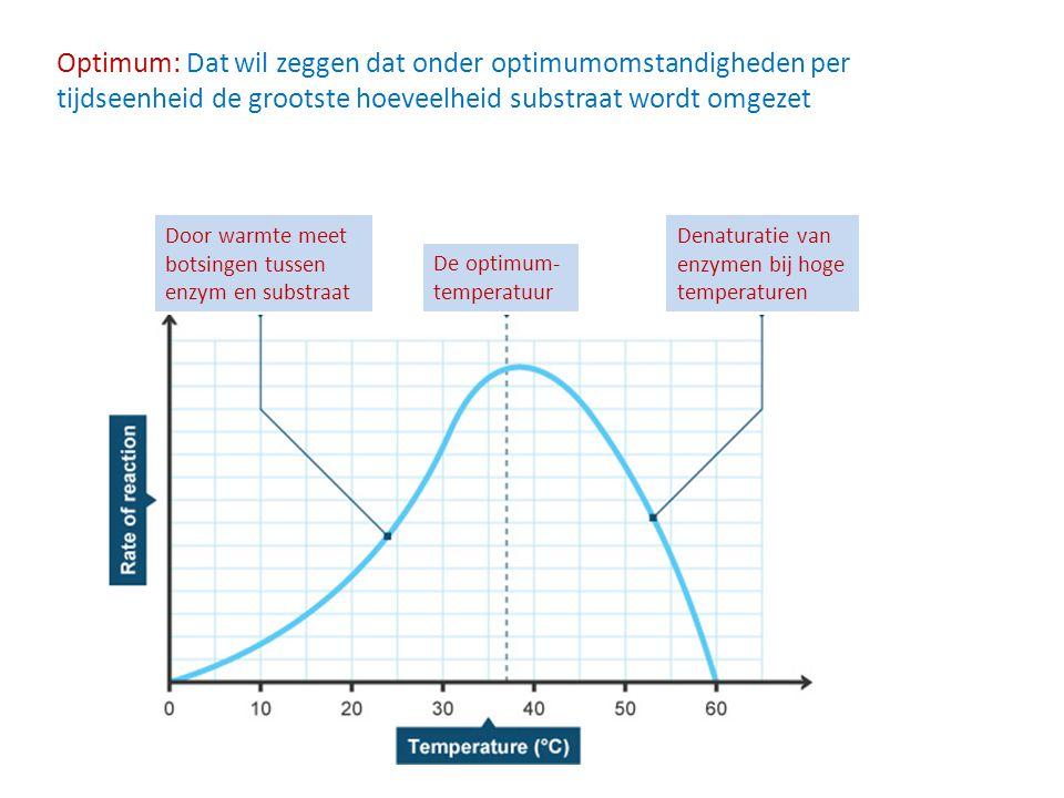 Optimum: Dat wil zeggen dat onder optimumomstandigheden per tijdseenheid de grootste hoeveelheid substraat wordt omgezet Door warmte meet botsingen tu
