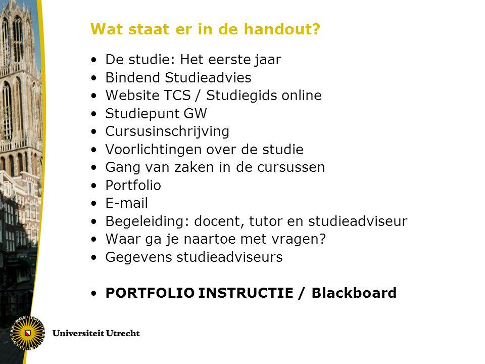 Begeleiding: docent, tutor en studieadviseur Docent Cursus, inhoud, vakgebied, studieaanpak, toetsing, tips voor andere cursussen/stage etc.
