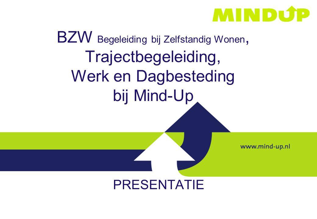 BZW Begeleiding bij Zelfstandig Wonen, Trajectbegeleiding, Werk en Dagbesteding bij Mind-Up PRESENTATIE