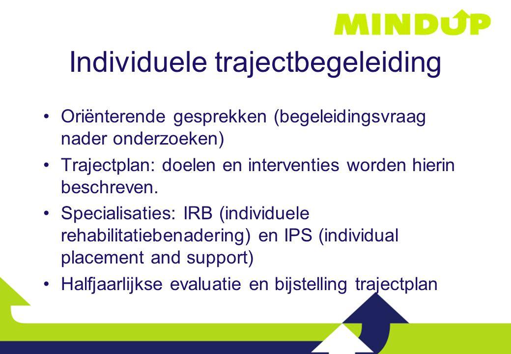 Individuele trajectbegeleiding Oriënterende gesprekken (begeleidingsvraag nader onderzoeken) Trajectplan: doelen en interventies worden hierin beschre