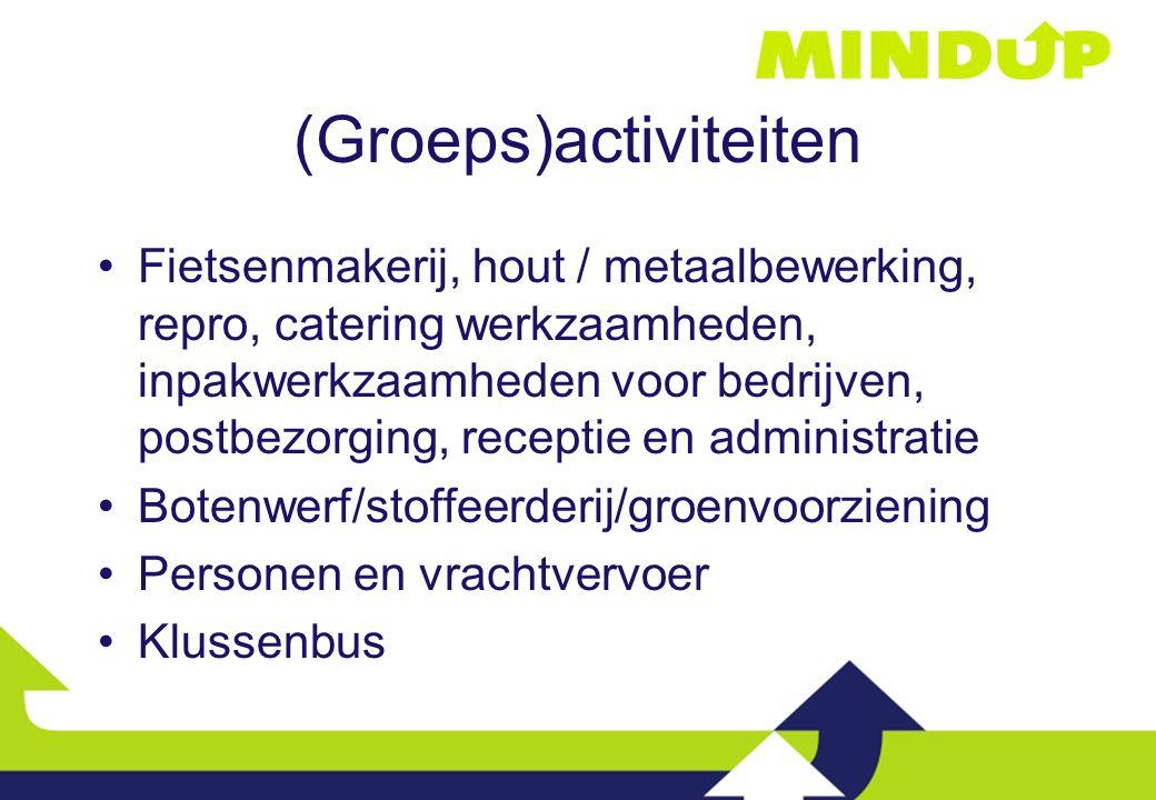 (Groeps)activiteiten Fietsenmakerij, hout / metaalbewerking, repro, catering werkzaamheden, inpakwerkzaamheden voor bedrijven, postbezorging, receptie