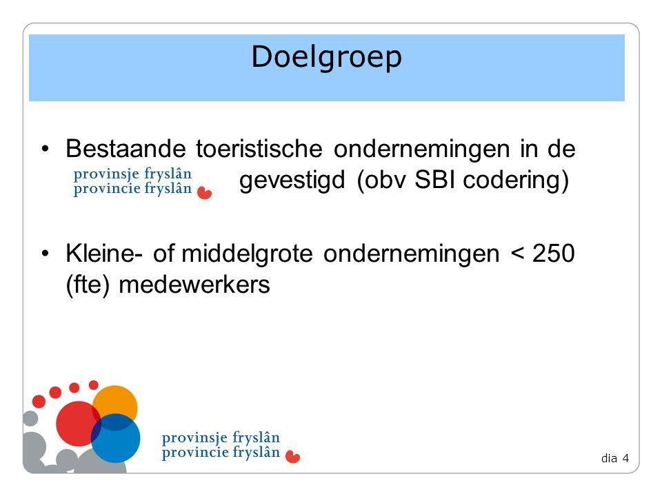 Bestaande toeristische ondernemingen in de gevestigd (obv SBI codering) Kleine- of middelgrote ondernemingen < 250 (fte) medewerkers Doelgroep dia 4