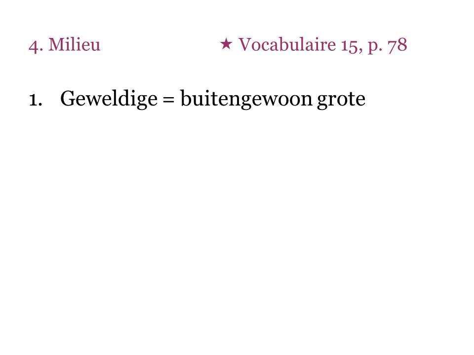 4. Milieu  Vocabulaire 15, p. 78 1.Geweldige = buitengewoon grote