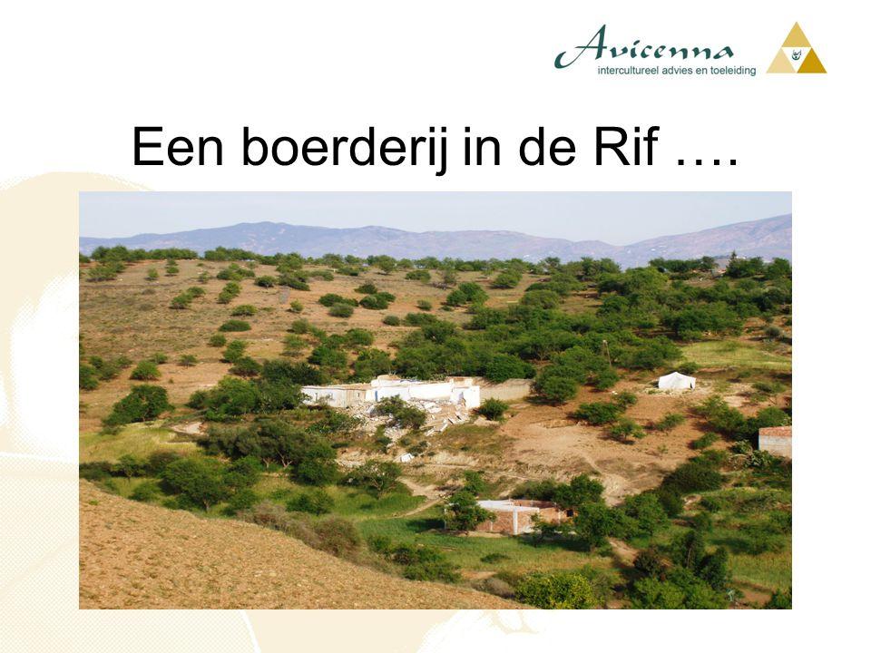 Een boerderij in de Rif ….