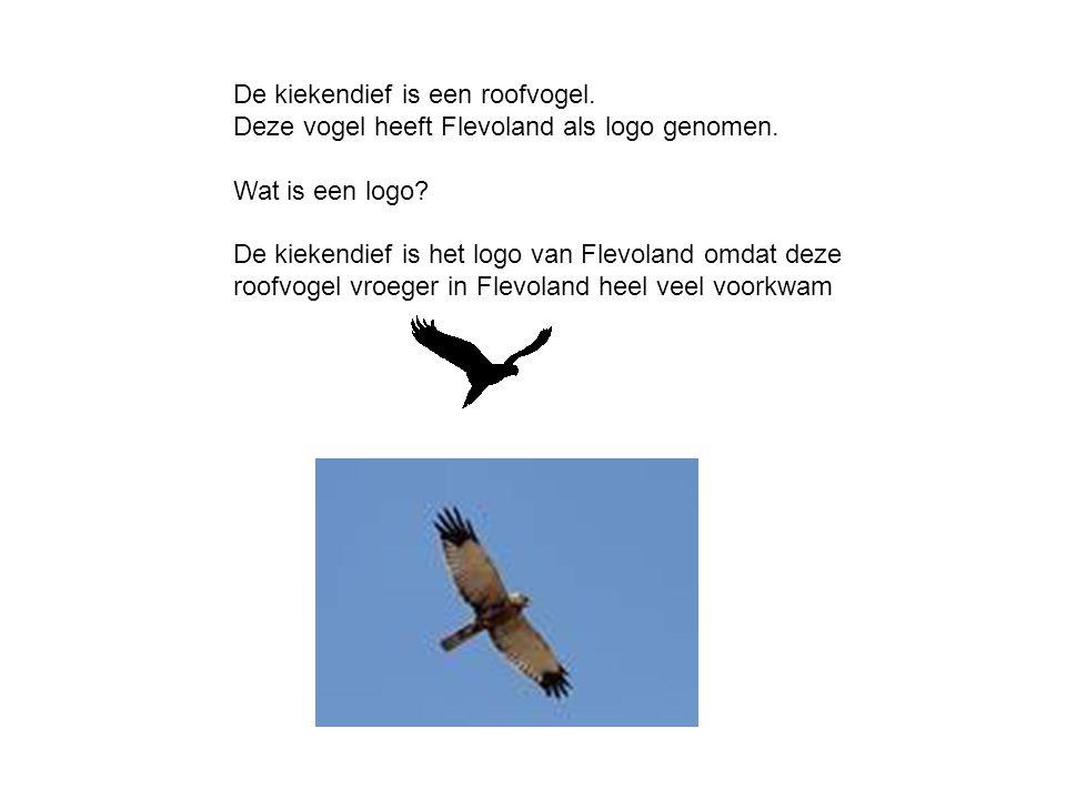 De kiekendief is een roofvogel. Deze vogel heeft Flevoland als logo genomen. Wat is een logo? De kiekendief is het logo van Flevoland omdat deze roofv