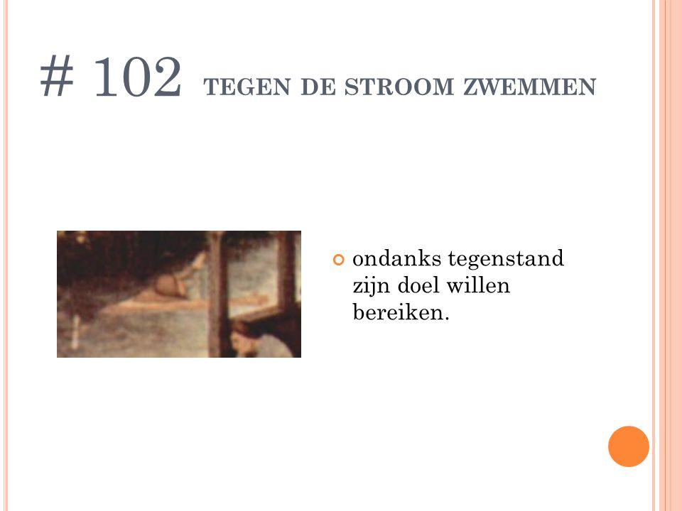TEGEN DE STROOM ZWEMMEN ondanks tegenstand zijn doel willen bereiken. # 102