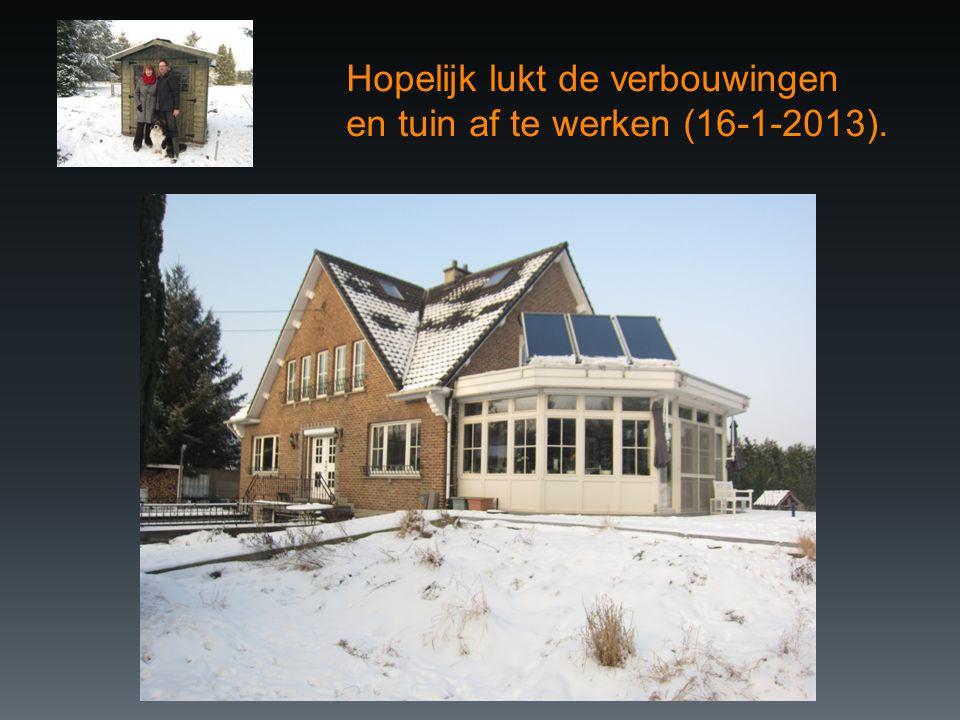 Hopelijk lukt de verbouwingen en tuin af te werken (16-1-2013).
